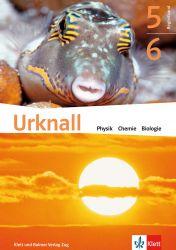 Urknall 5/6