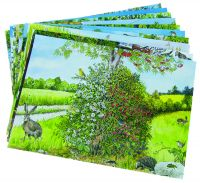 Feldbuch NaturSpur