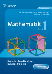 Besonders begabte Kinder individuell fördern Mathematik